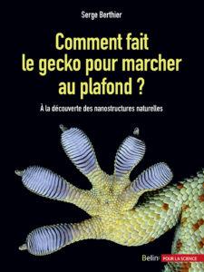 Comment fait le gecko pour marcher au plafond ? (S. Berthier, Belin, 2016)