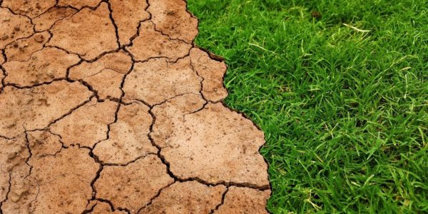 Un nouveau rapport spécial du GIEC sur un réchauffement global possible de 1,5°C