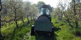 Comment la chimie accélère la réduction des pesticides et favorise la protection biologique des cultures